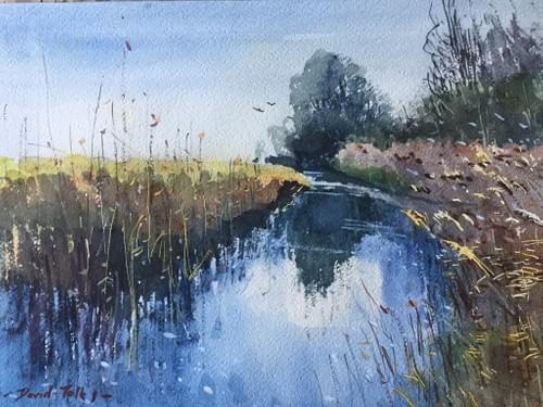 Fleet Dyke, Halvergate Marsh