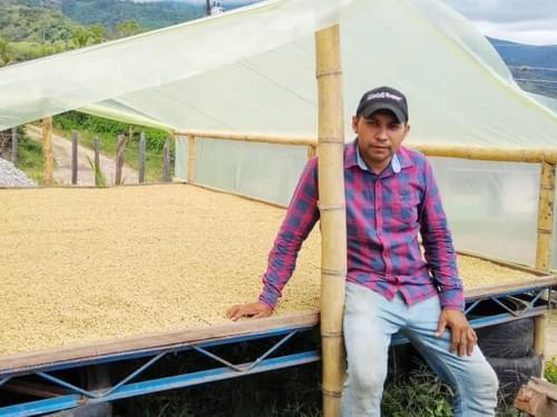 コロンビア ラ・イザベラ農園 デイビー・ガブリエル