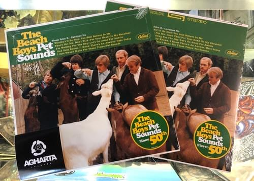 The Beach Boys- Pet Sounds LP On Vinyl [MONO or STEREO]