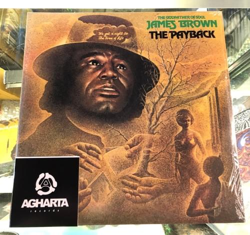 James Brown- The Payback 2xLP On Vinyl
