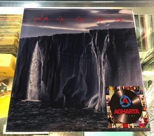 Pearl Jam - Gigaton 2XLP On Vinyl
