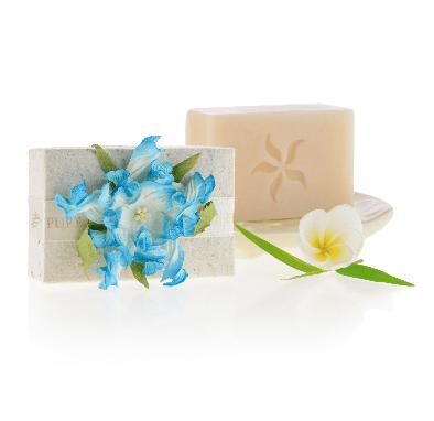 Handmade Luxury Soap Coconut