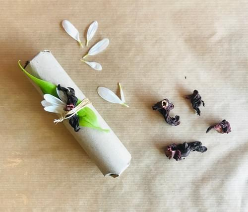 Sérum à l'Hibiscus