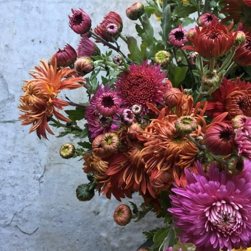 Flower CSA Shares by Late Bloomers Flower Farm