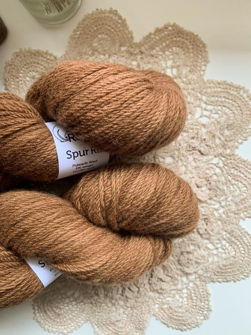 Spur Rd Yarn – All the Leaves are Brown Colourway