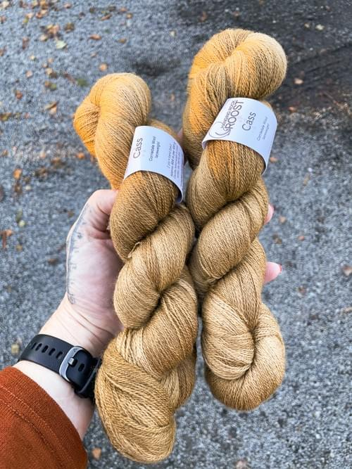 Cass Yarn – All the Leaves are Brown Colourway
