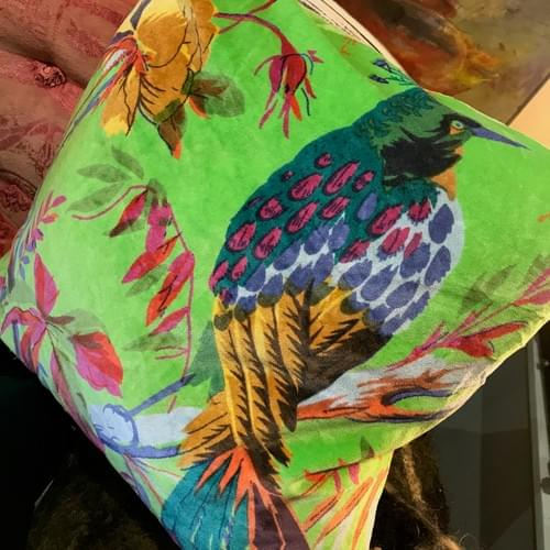 Bird of Paradise velvet Cushion from Ian Snow