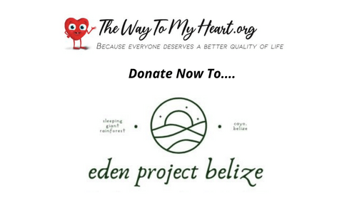 Donate: The Eden Project
