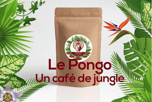 Le Pongo