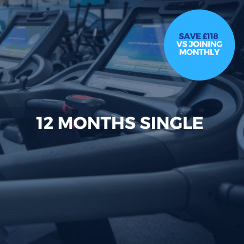 12 Months Single