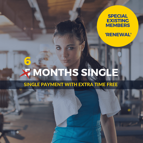 6 Months SPECIAL Single Renewal