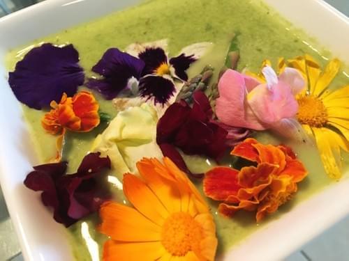 Alkaline Green Soup