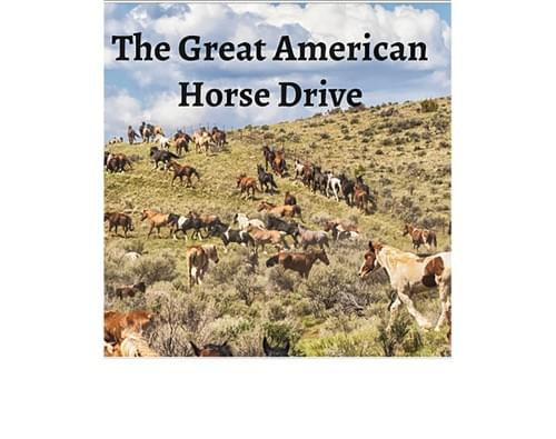 The Great American Horse Drive Book