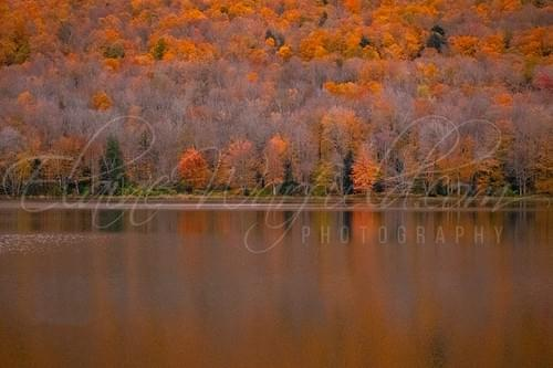 2020 Northern Catskills Calendar