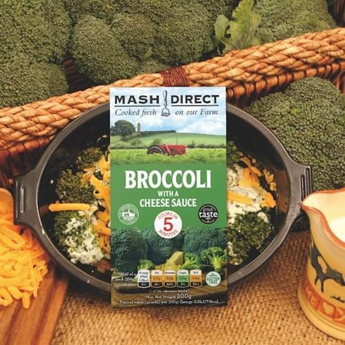 Broccoli and cheese sauce
