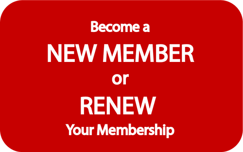 Annual Membership Fee