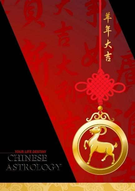 Chinese Astrology Birth Chart (with 5 years of annual forecasts)