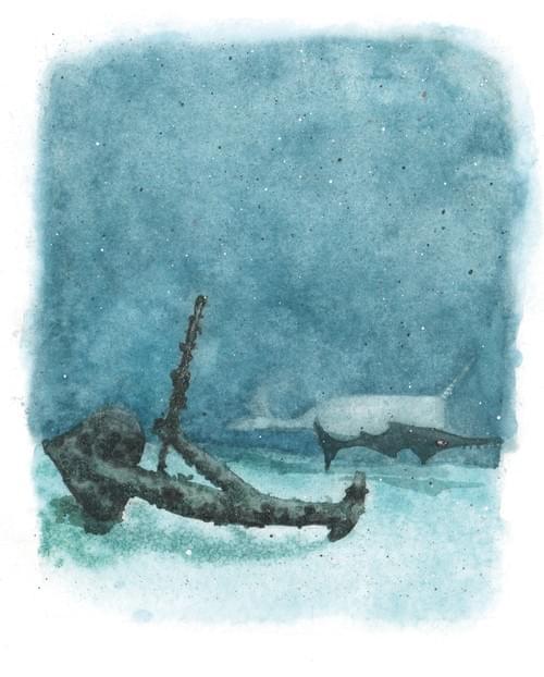 """La Méduse, page 50 de """"L'âge bleu, sauver l'océan"""""""