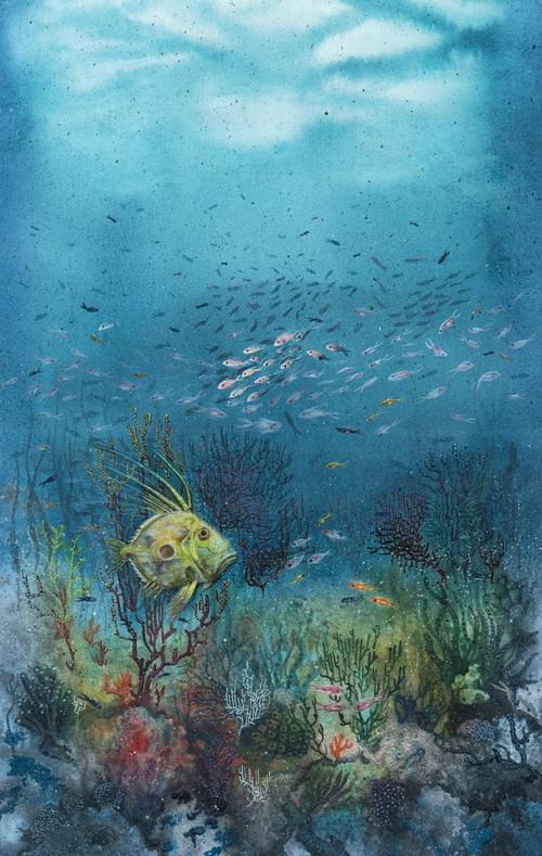 Saint Pierre dans les coraux