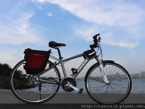 A型 GIANT ROAM2  27段變速旅行車10天費用