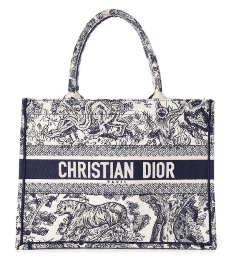 CHRISTIAN DIOR Embroidered Toile De Jouy Small Canvas Book Tote Blue