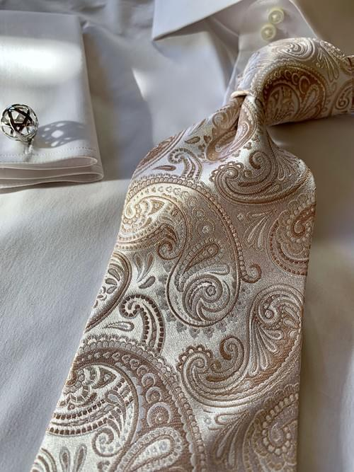 NEW - Autumn Frost Tan Paisley Tie