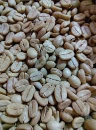 Organic Green Coffee Beans Raw 5 Lbs Bag