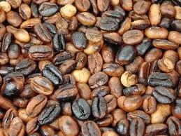 ORGANIC TOASTED COFFEE BEANS SAMPLER PACK JOSE SANFILIPPO 5 Lb, 25 Lb BAG LIGHT, MEDIUM, DARK ROAST