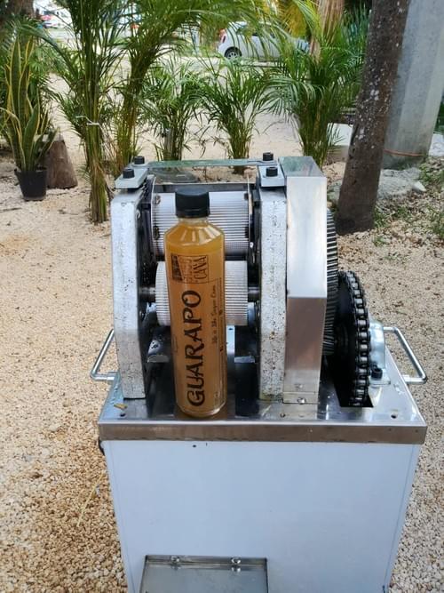 Sugarcane Juice 100% Natural  11.83 fl.oz / 350 ml 1