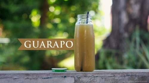 Concentrate Sugarcane Juice Pasteurized All Natural Not Diluted 23% Brix Guarapo by Galon