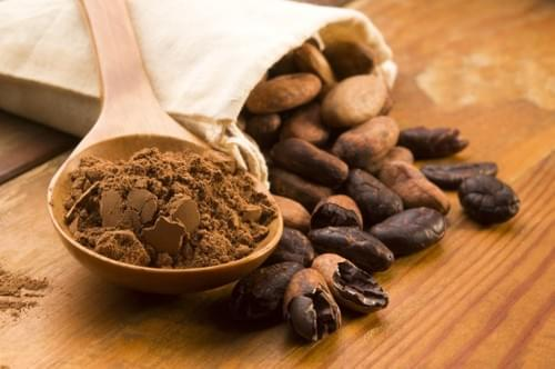 Raw Cacao Beans Organic from $5.99 dlls. lb ($0.37 ounce)
