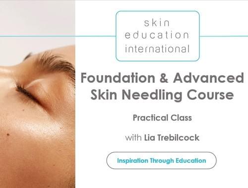 Online Skin Needling Practical Class