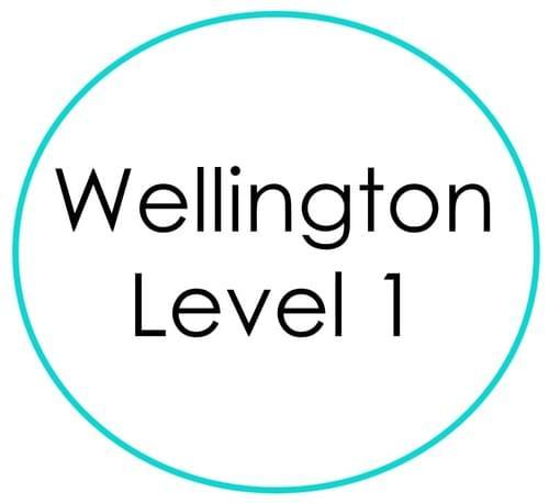 Wellington (NZ) Level 1