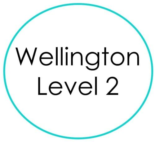 Wellington (NZ) Level 2