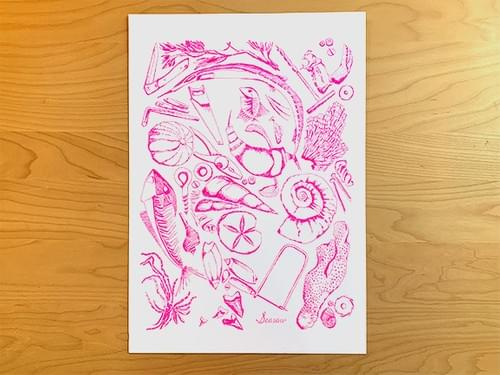 Fossils Poster - Neon Pink