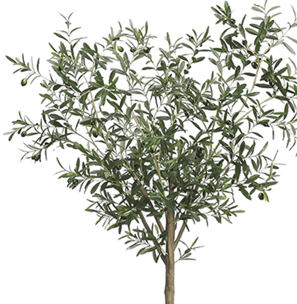TALL FAUX OLIVE TREE