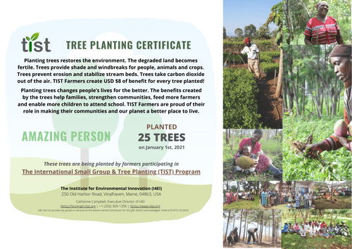 Give the Gift of Trees for $1 Each (Free Custom Tree Planting Certificate)