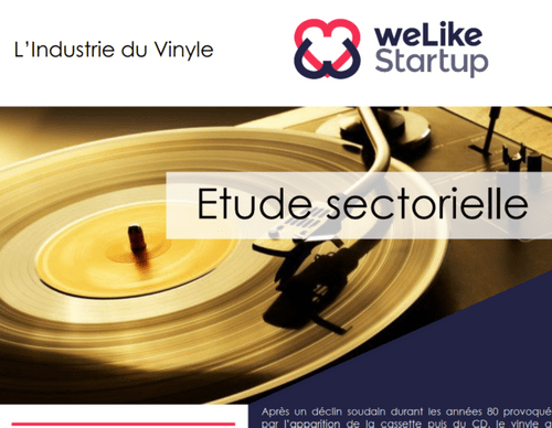 L'Industrie du Vinyle (8 pages)