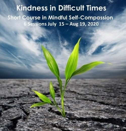 Short Course Mindful Self Compassion July/ August 2020
