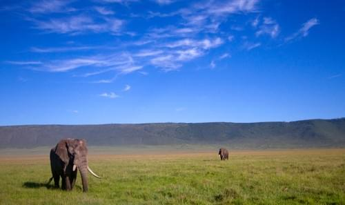 3days/2nights of Safari