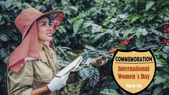 WOMAN PICKING COFFEE AT COSTA RICA TARRAZU