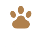 Bed and Biscuit Boarding Kennels, Wexford - First Aid