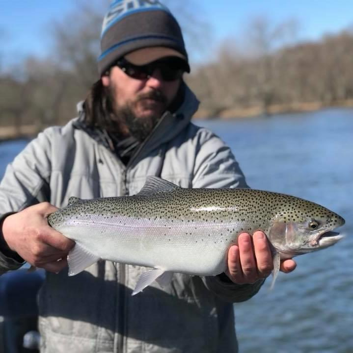 Manistee River | Tippy Dam | Steelhead Fishing Report