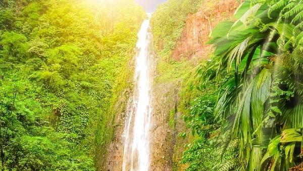 cascade-guadeloupe-waterfall-french-caribbean