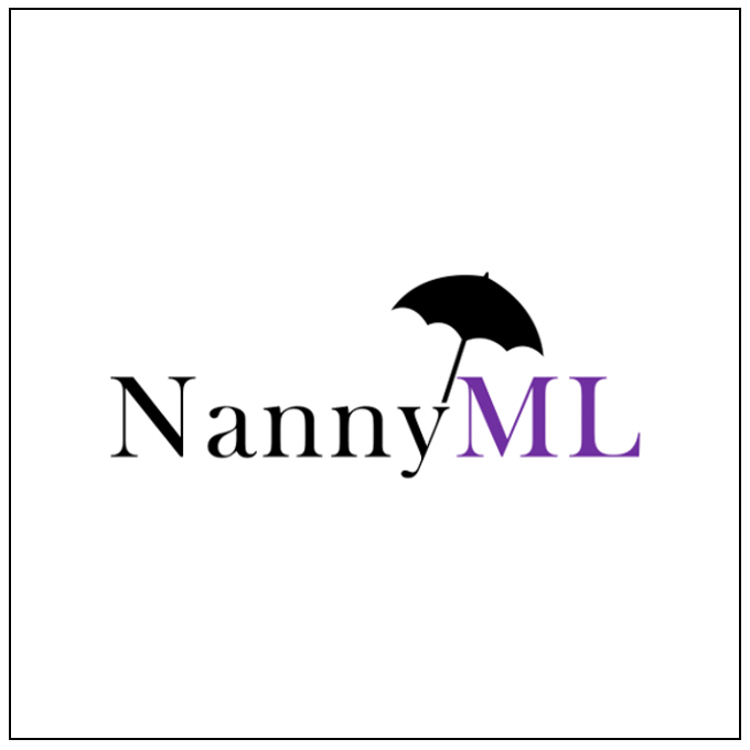 Careers at NannyML - Volta Ventures