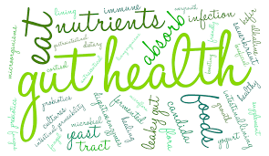 Gut Health Betty O'Neill Nutritional Therapy