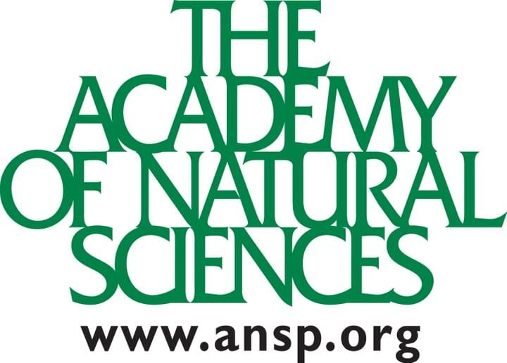 The Academy of Natural Sciences logo www.ansp.org (green and black)