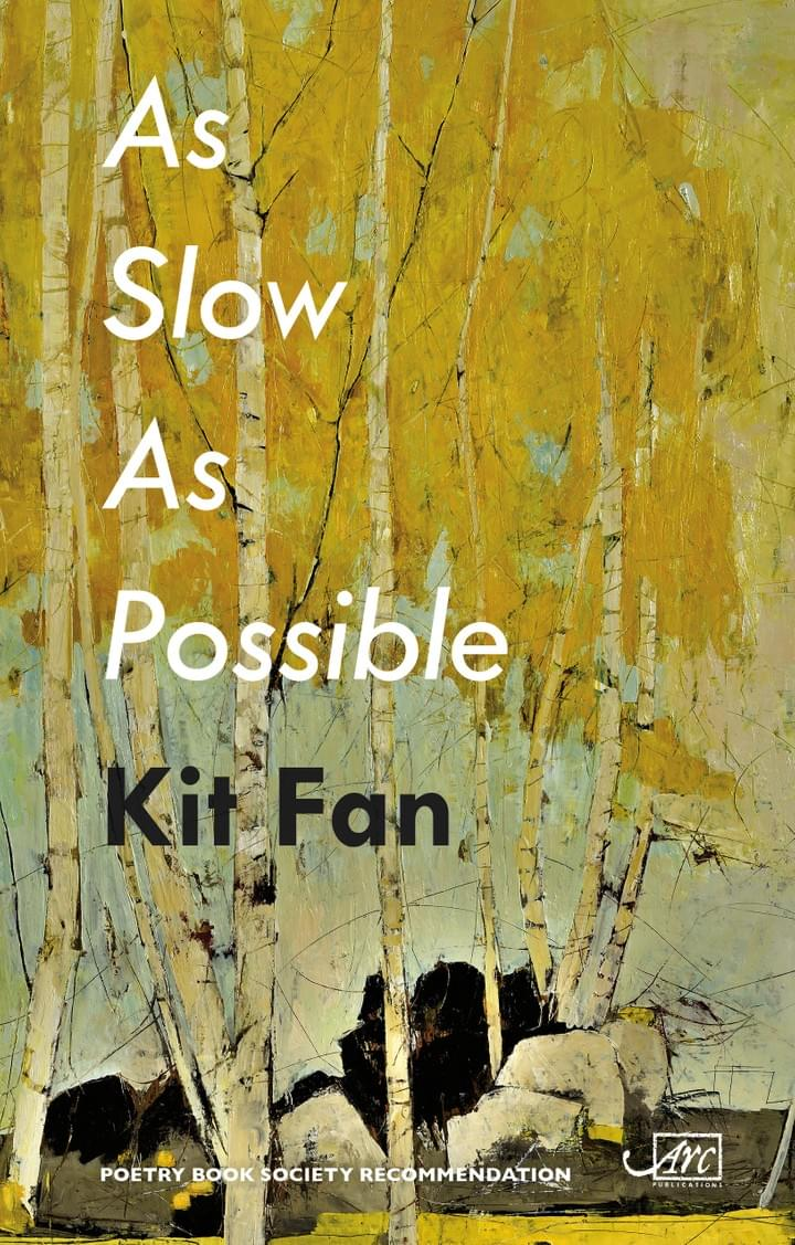 Kit Fan second book As Slow As Possible