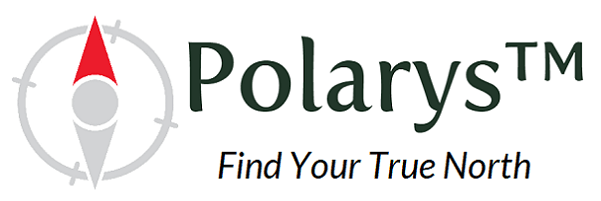 Polarys School Improvement Solution