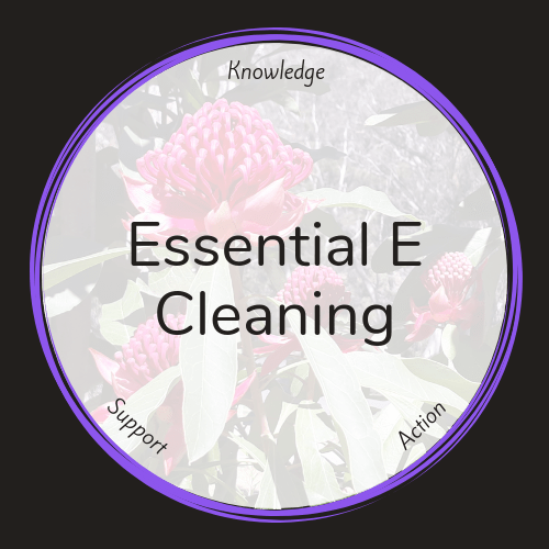 Essential E Cleaning